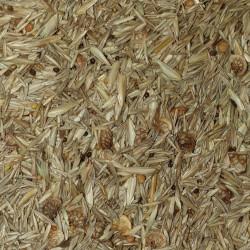 Graines de mélange Semences du Puy
